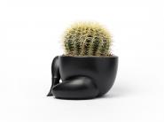 _parra_planter___f8731