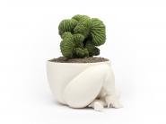 _parra_planter___f8777